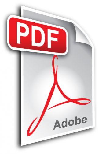 скачать в pdf  файле